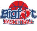Bigfoot logo trans
